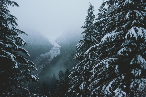 Snowy River in Pacific Northwest