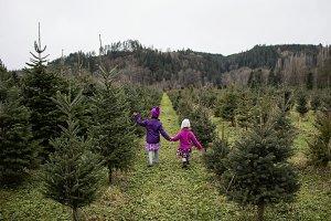 Girls in Christmas Tree Farm