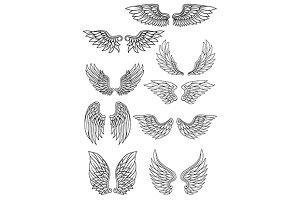 Set of outline heraldic wings
