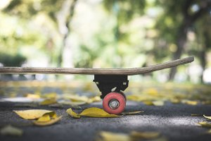 Skateboard in the park during autumn