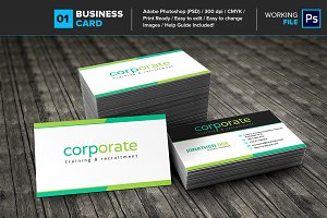Professional Business Card 01
