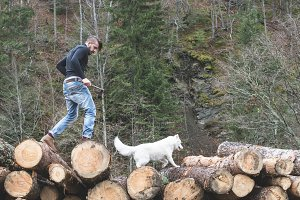 Young man and dog on logs in the for