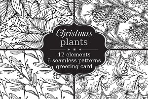 Hand drawn Christmas plants