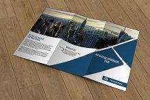 Trifold Corporate Brochure -V305
