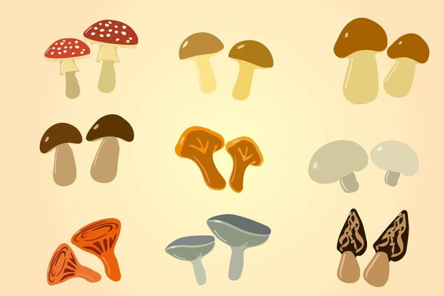 Cartoon Color Mushrooms Custom Designed Illustrations Creative