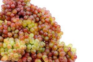 Heap of Sultana Grape