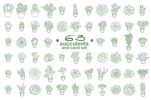 63 Succulents illustration set