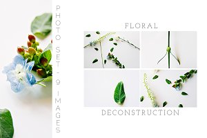 Floral Deconstruction Photo Set