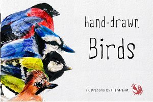 Winter Hand-drawn Birds