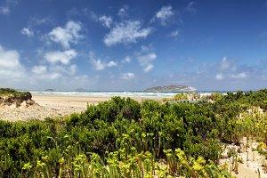 Coastal landscape in Wilsons Prom