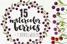 15 Watercolor Berries & 1 Wreath
