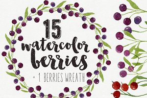 15 Watercolor Berries & 1 Wreath