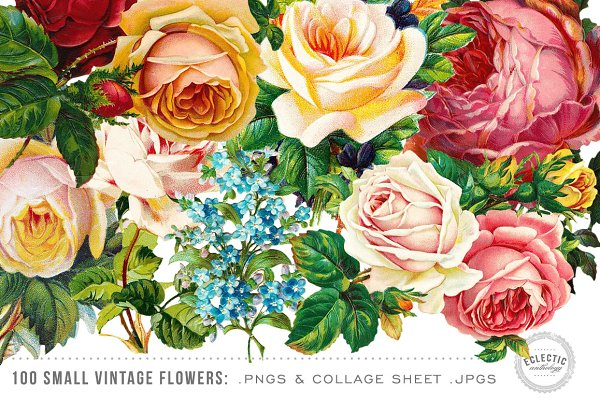 100 Small Vintage Flower Graphics