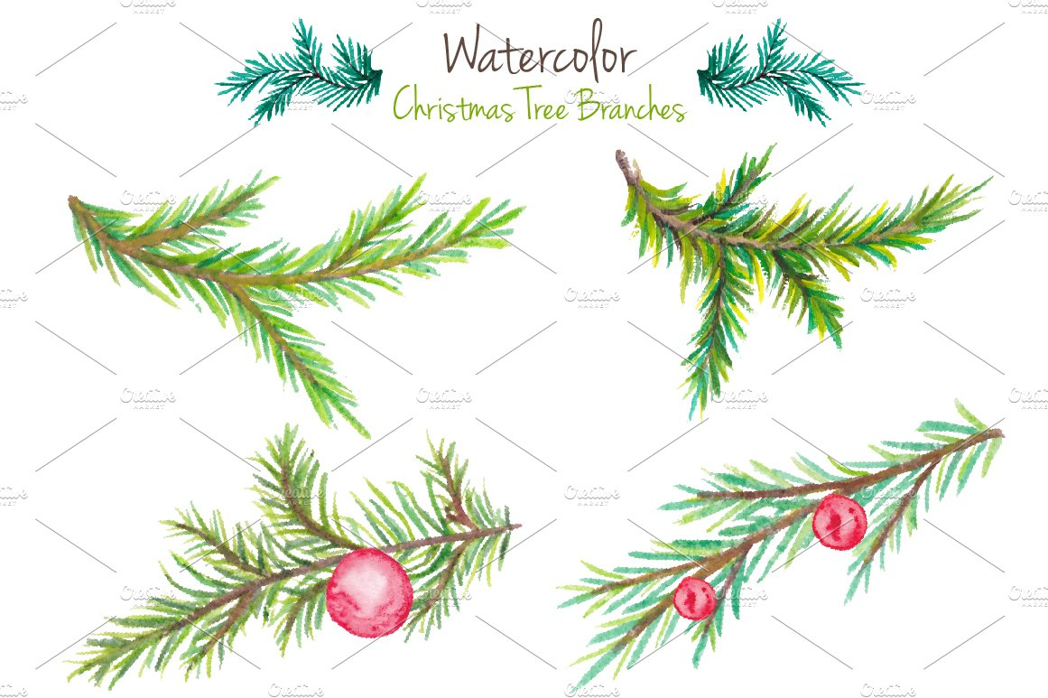 Watercolor Christmas tree branches ~ Illustrations ~ Creative Market