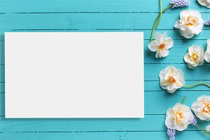 Postcard mock up template for design