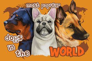 100 Dog Breeds Popular in the World