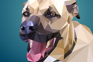 Low Poly dog