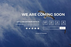 Bird Coming Soon Page Design