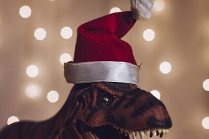 dinosaur with Santa Hat during Christmas