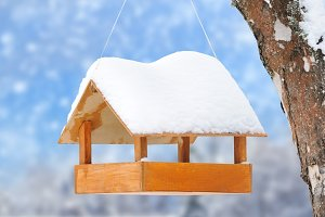 Wooden bird feeder on a tree