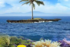 Beautiful island with palm trees