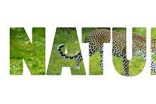 nature_w_1.jpg