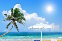Beach chair, palm, and white umbrell