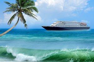 Travel concept. Beach, palm, airplan