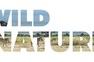 wild_nature_w_1.jpg