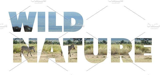 wild_nature_w_1.jpg - Photos