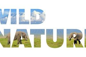wild_nature_w_2.jpg