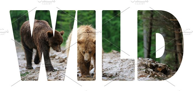 """Background with word """"Wild"""". Letters - Photos"""