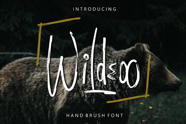 Wildeoo - Hand Brush