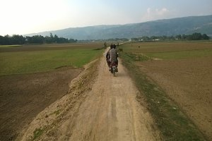 A walking road in haor area