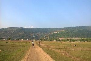 A village field in Bangladesh