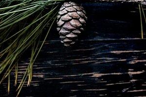 Winter Foliage & Pinecone