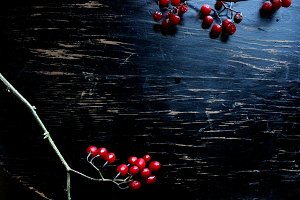Holiday Berries & Twigs