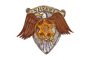 Sheriff Badge American Eagle Shield