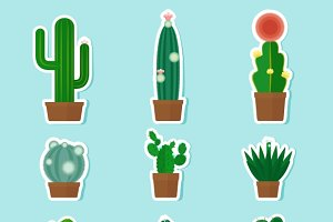 Cactus Vector Icons & Cactus Pattern