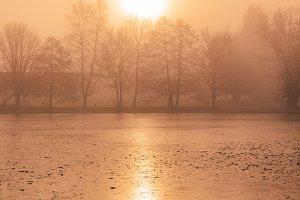 Misty sunrise by the frozen lake