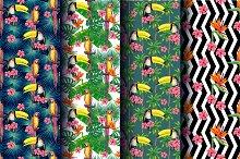 Tropical summer patterns set