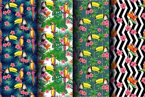 Tropical summer patterns set