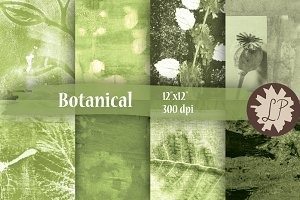 Botanical Painted Papers