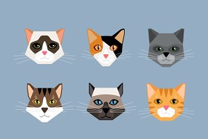 Cats heads in flat style