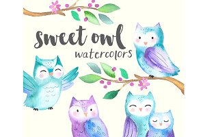 Sweet Baby Owls Watercolor Set