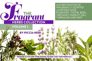 The Fragrant Herbs collection