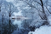 Winter landscape. River in fores