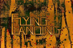 Flying Landing