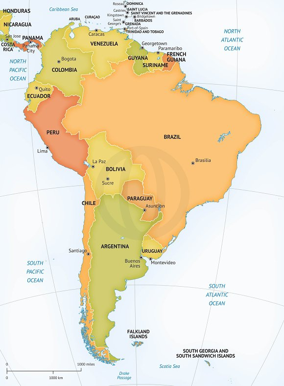 Vector Map Of South America Graphics Creative Market - Caracas on world map