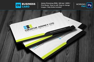 Professional Business Card 09